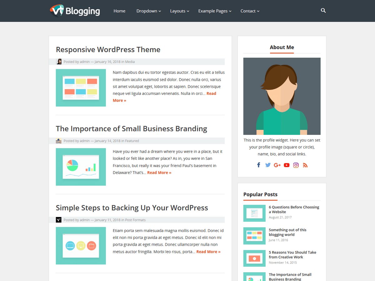 VT Blogging Download Free Wordpress Theme 5