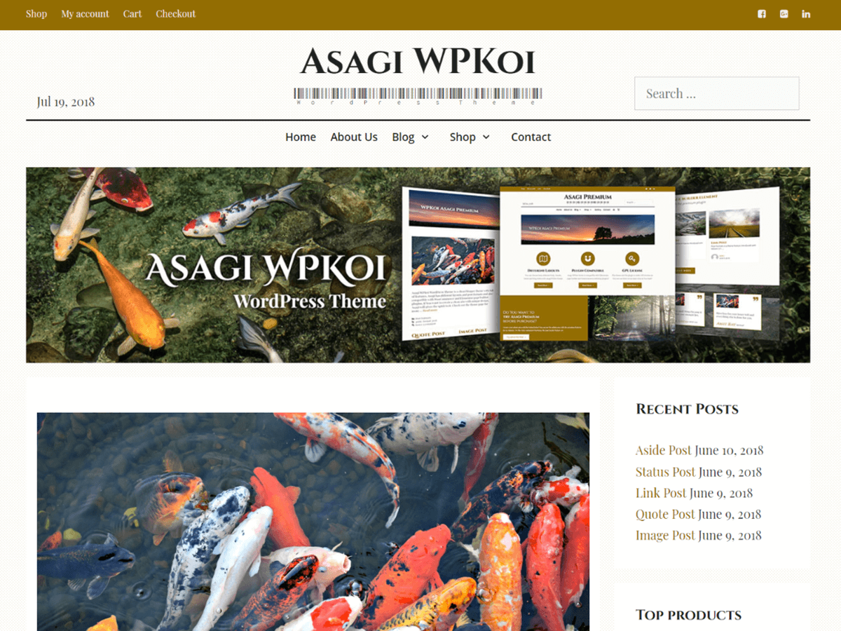 Asagi Download Free Wordpress Theme 1