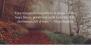 Affinity Download Free WordPress Theme