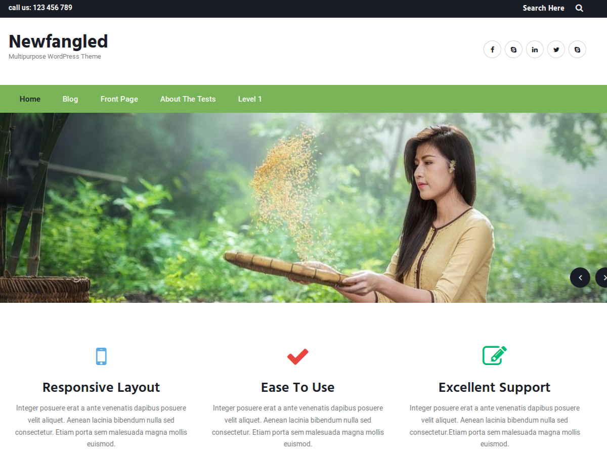 Newfangled Download Free Wordpress Theme 5