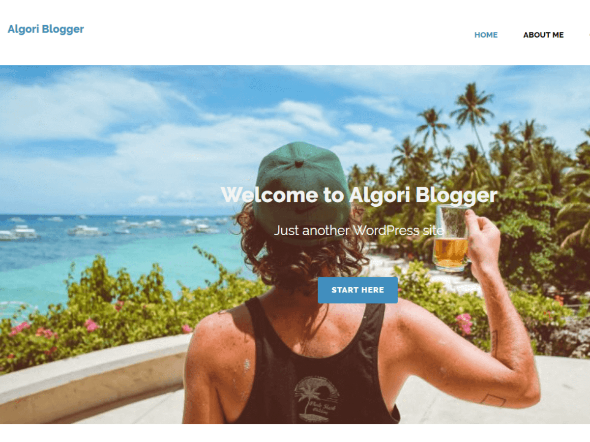 Algori Blogger Download Free Wordpress Theme 5
