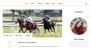 Blog Mantra Download Free WordPress Theme