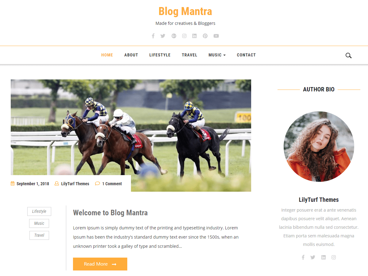 Blog Mantra Download Free Wordpress Theme 3