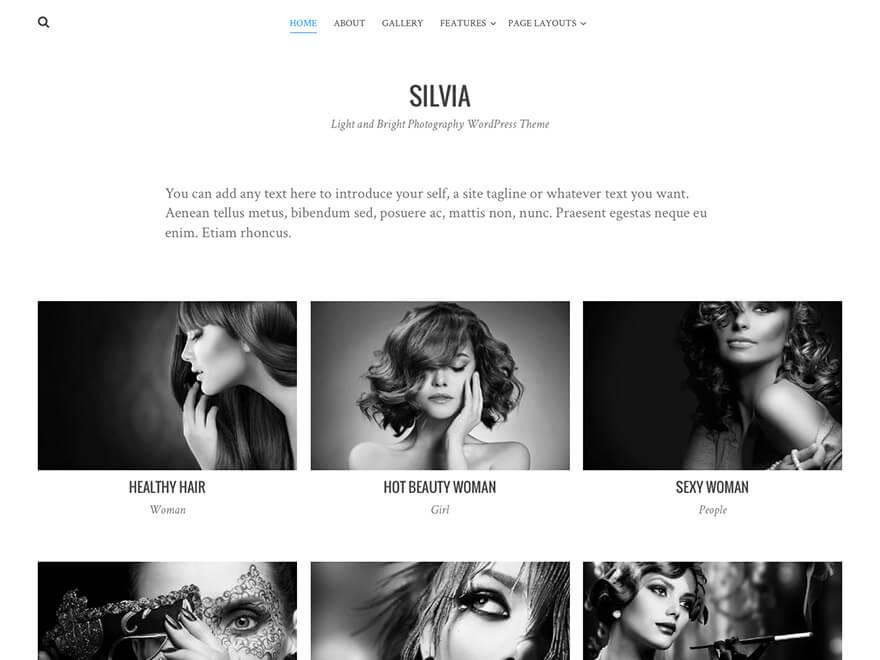 Silvia Download Free Wordpress Theme 2