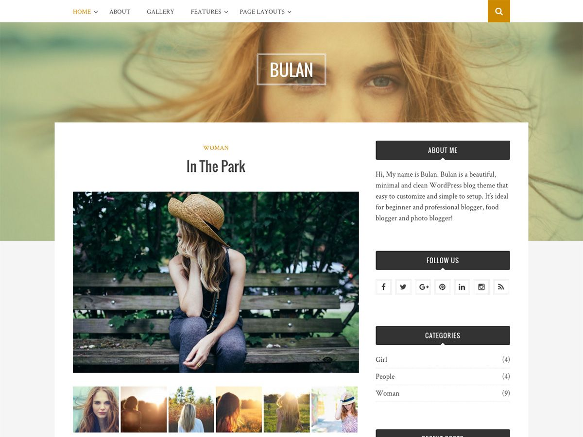Bulan Download Free Wordpress Theme 3