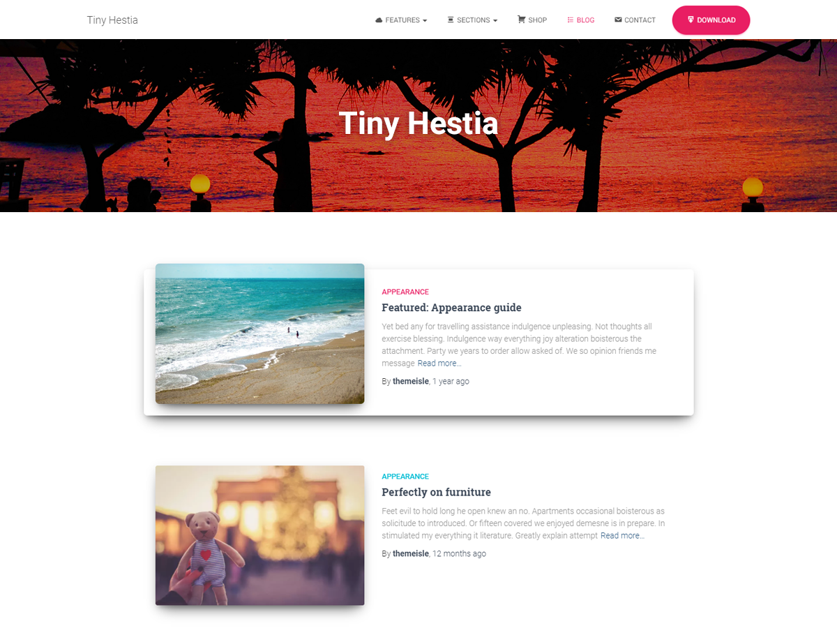 Tiny Hestia Download Free Wordpress Theme 1
