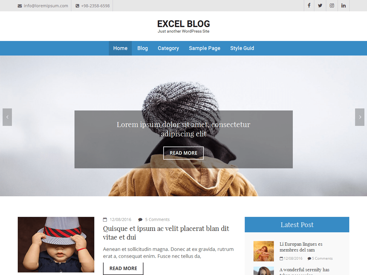 Excel Blog Download Free Wordpress Theme 3