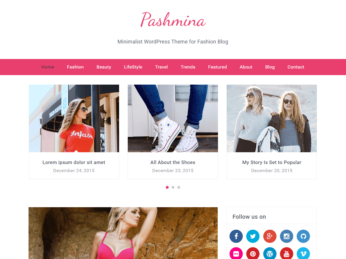 Pashmina Download Free Wordpress Theme 1