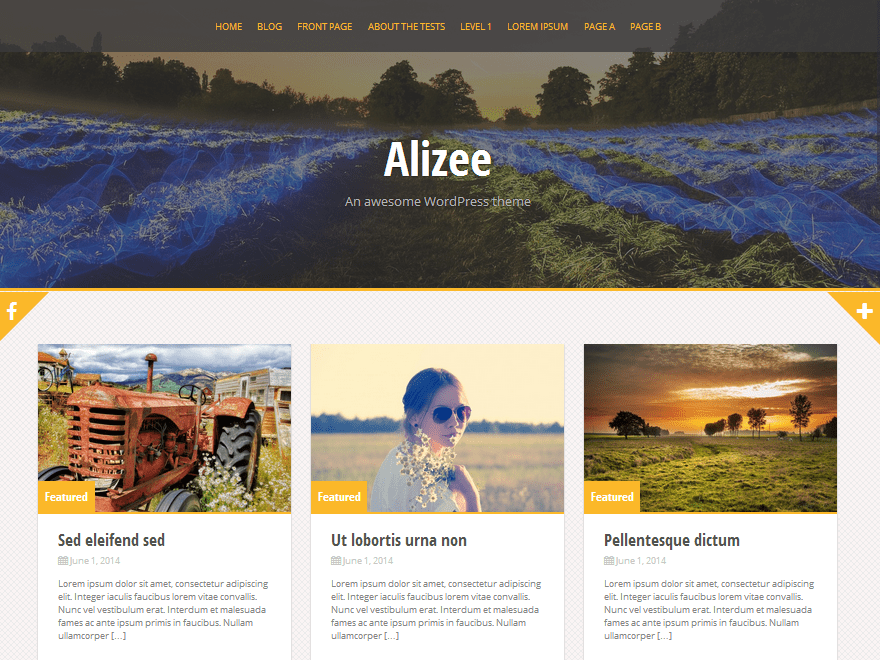 Alizee Download Free Wordpress Theme 2