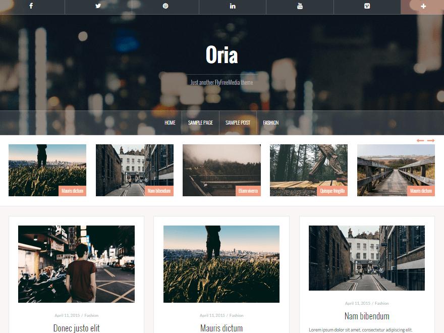 Oria Download Free Wordpress Theme 1