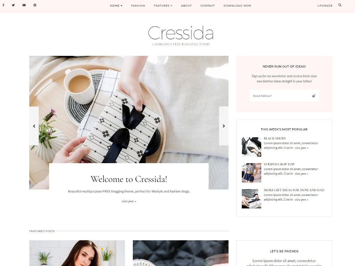 Cressida Download Free Wordpress Theme 3