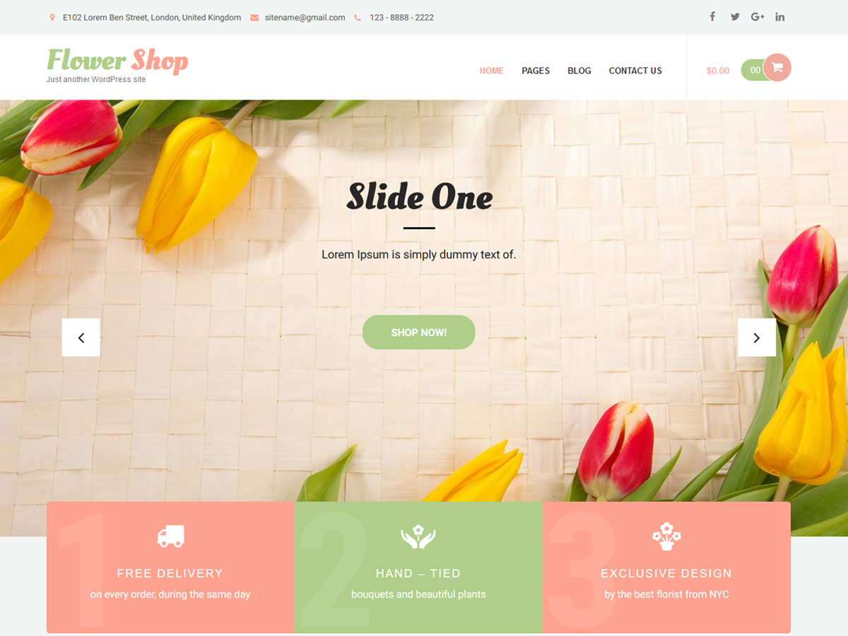 Flower Shop Lite Download Free Wordpress Theme 1