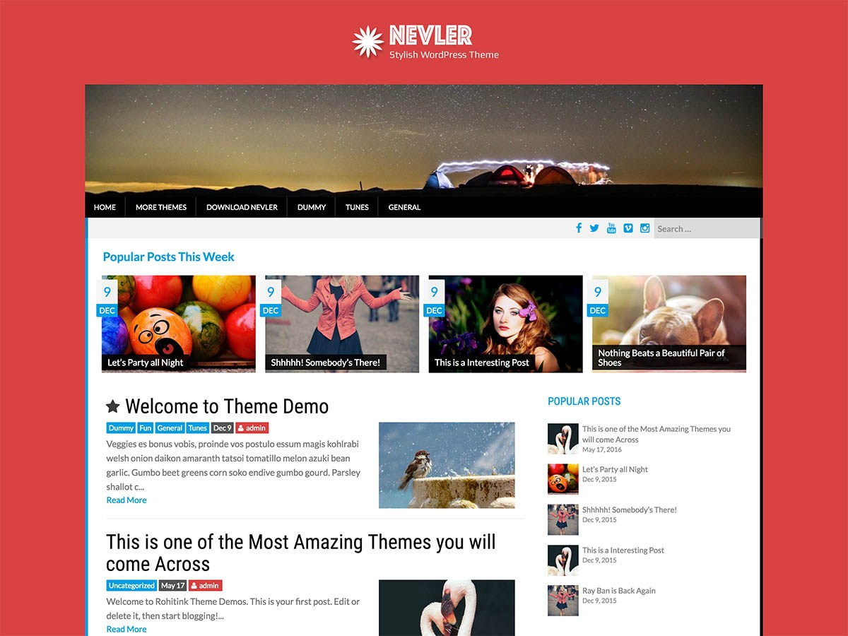 Nevler Download Free Wordpress Theme 4