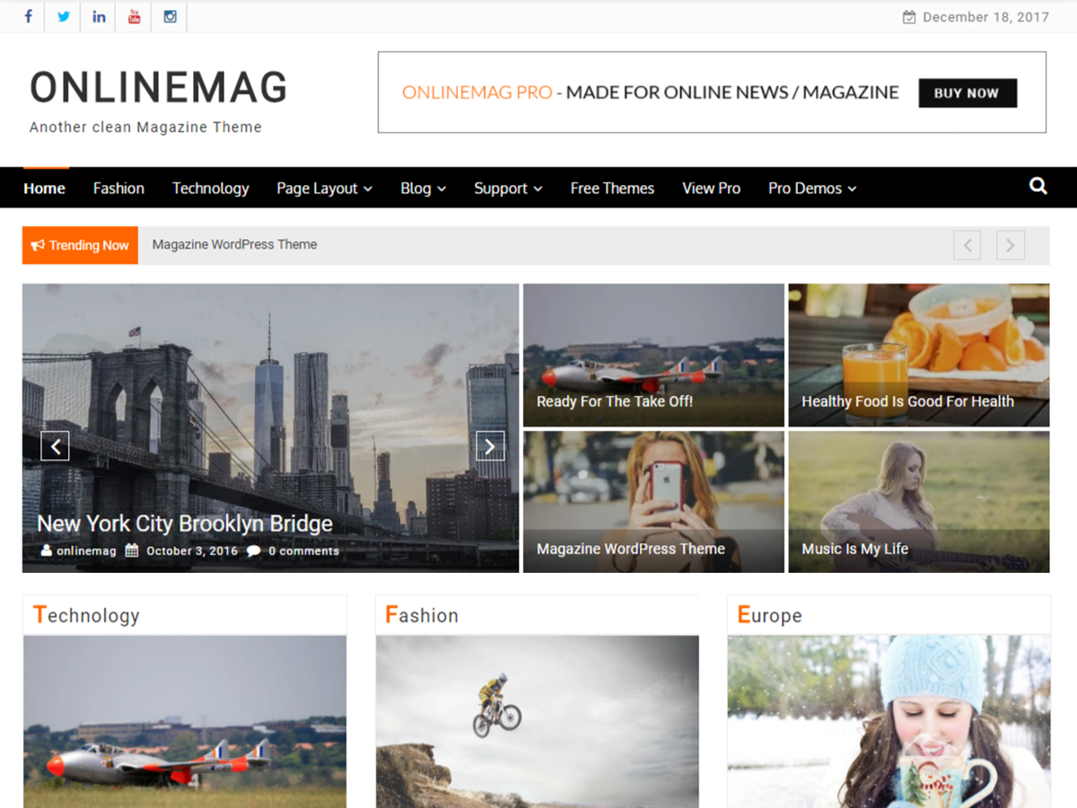 OnlineMag Download Free Wordpress Theme 5