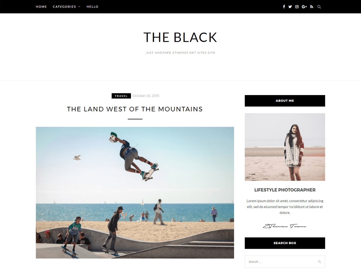BlackLite Download Free Wordpress Theme 5