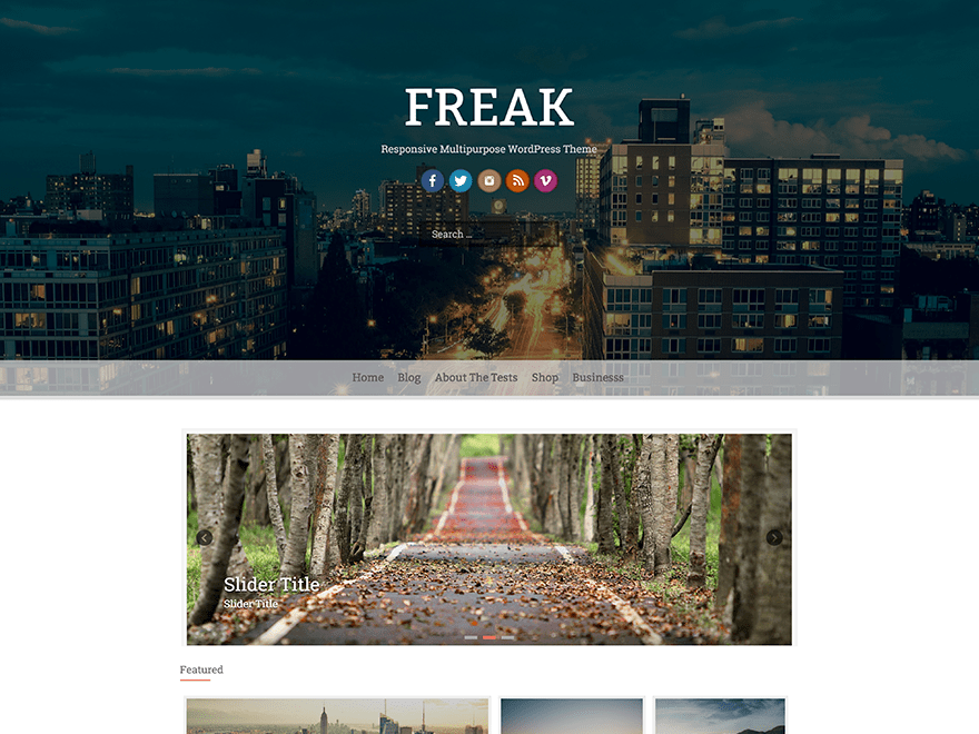 Freak Download Free Wordpress Theme 3
