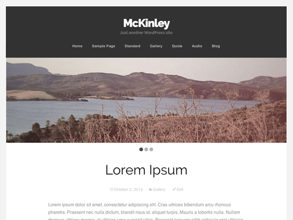McKinley Download Free Wordpress Theme 2