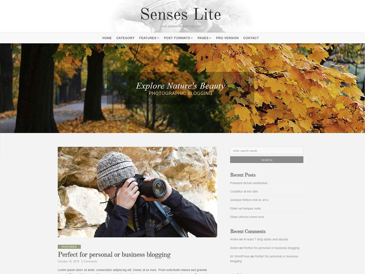 Senses Lite Download Free Wordpress Theme 4