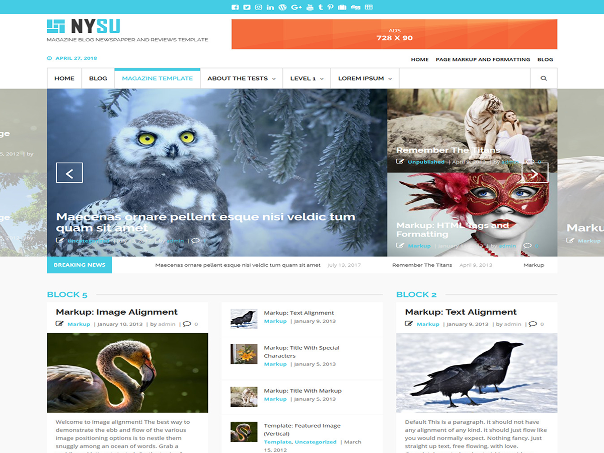 NYSU Magazine Download Free Wordpress Theme 5