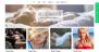 Nikkon Download Free WordPress Theme