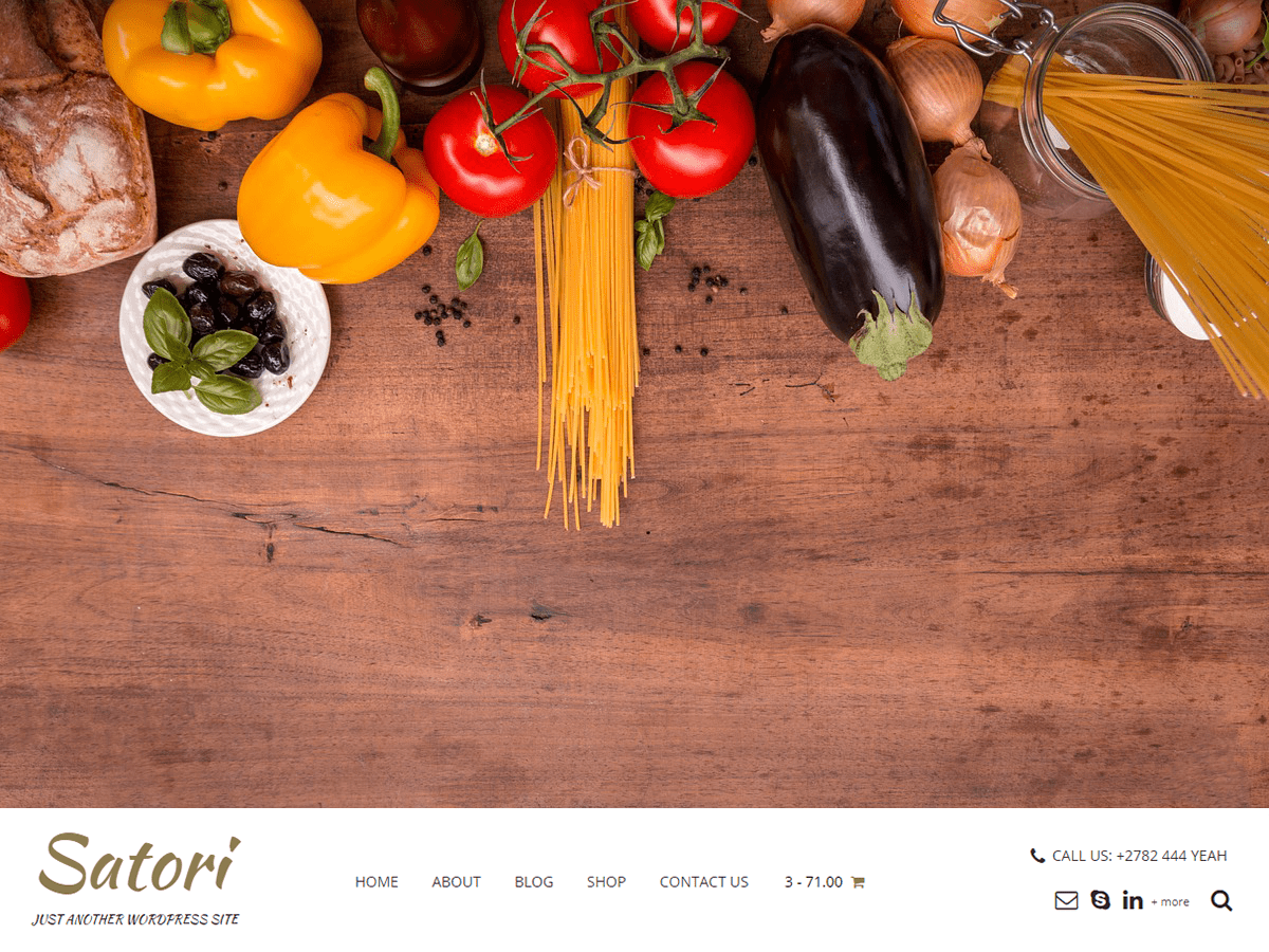 Satori Download Free Wordpress Theme 3