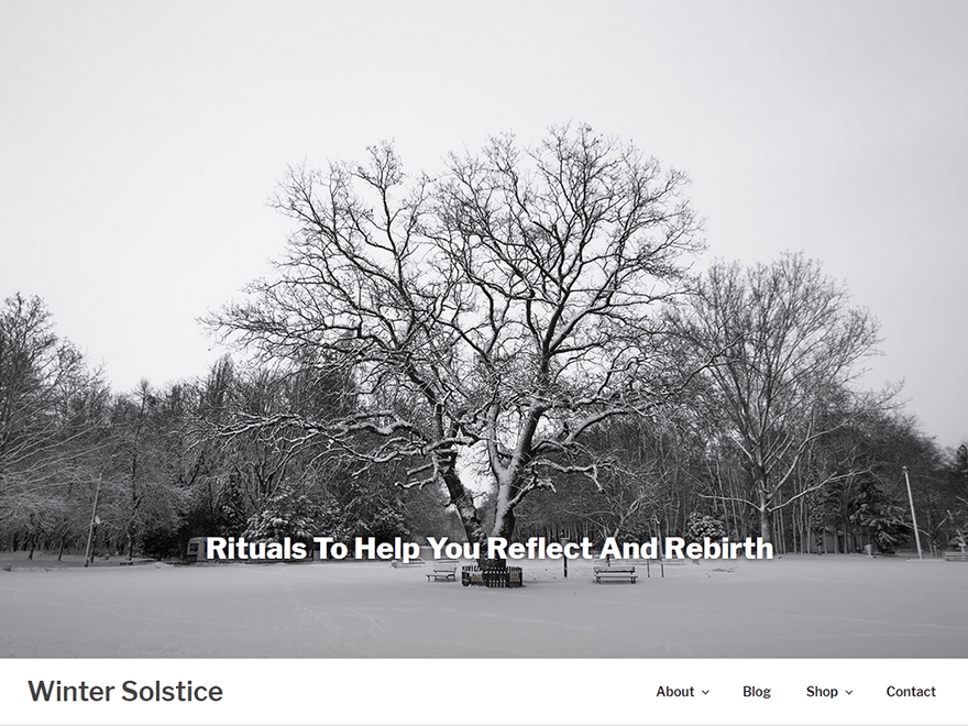 Winter Solstice Download Free Wordpress Theme 5