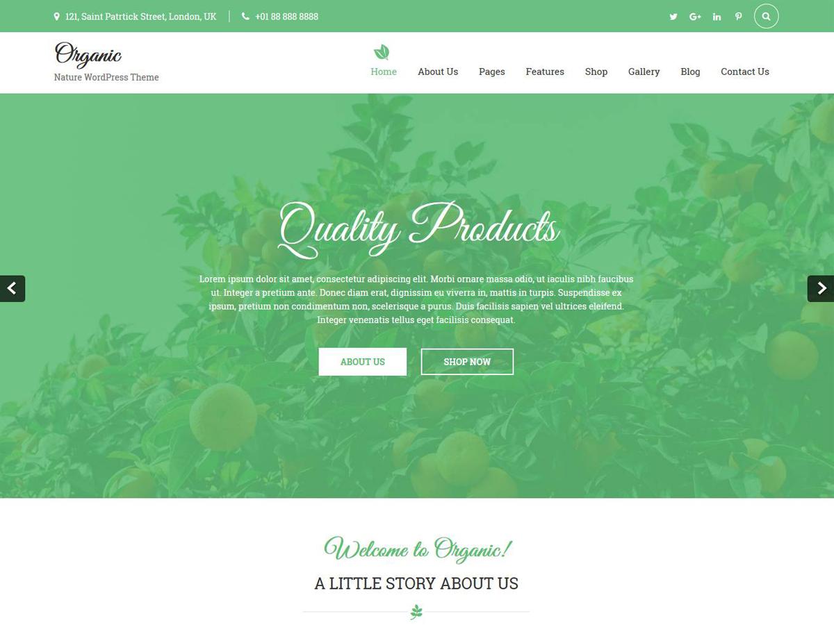 Organic Lite Download Free Wordpress Theme 4