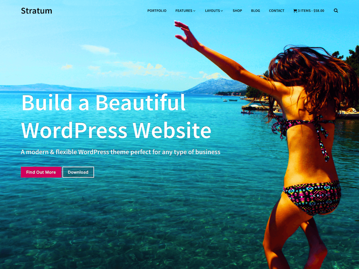 Stratum Download Free Wordpress Theme 5