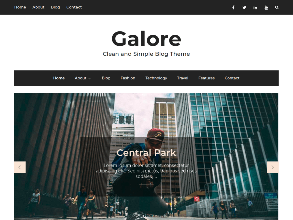 Galore Download Free Wordpress Theme 3