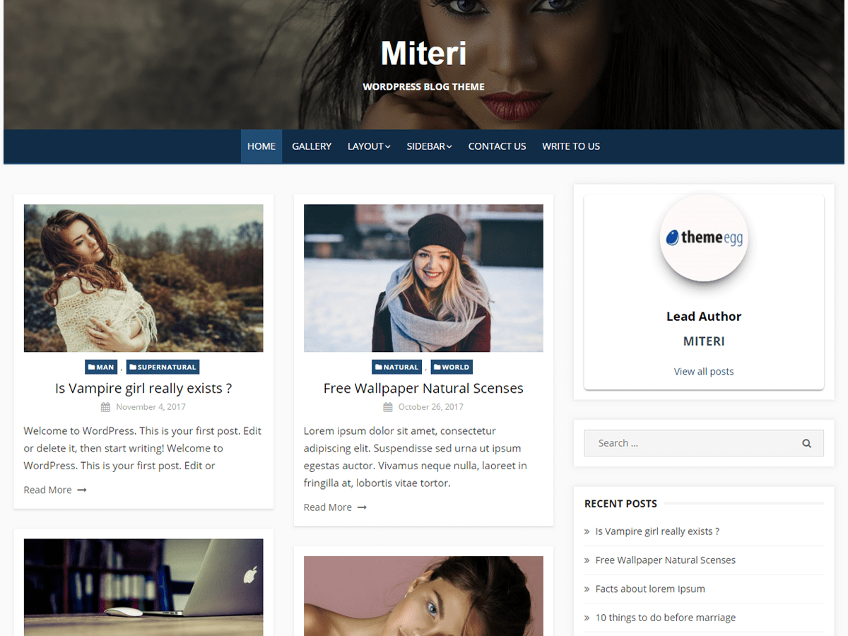 Miteri Download Free Wordpress Theme 2