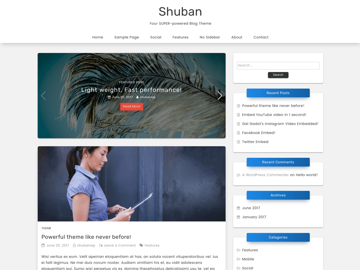 Shuban Download Free Wordpress Theme 4