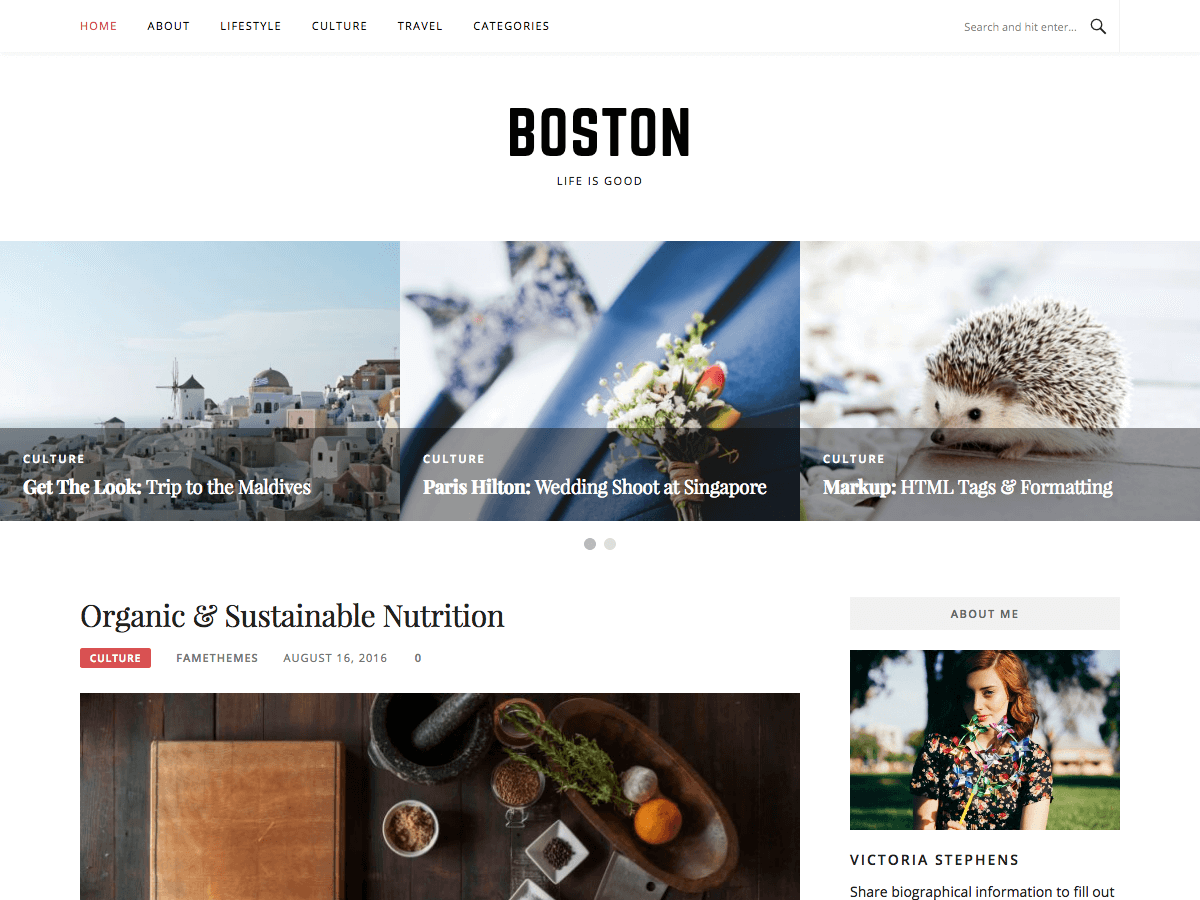 Boston Download Free Wordpress Theme 5