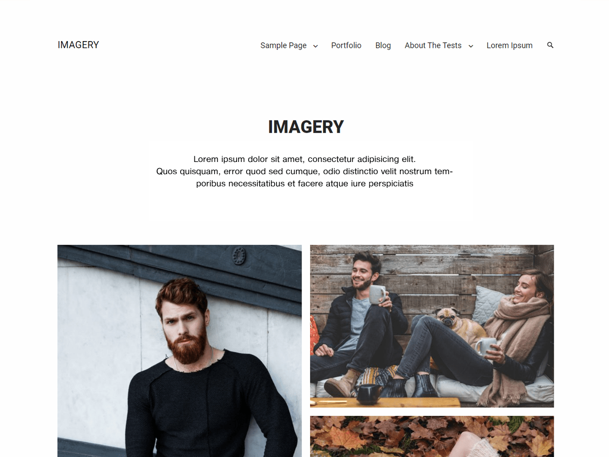 Imagery Download Free Wordpress Theme 4