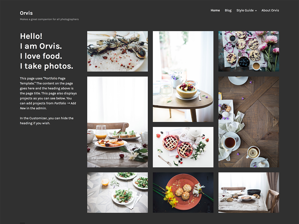 Orvis Download Free Wordpress Theme 1