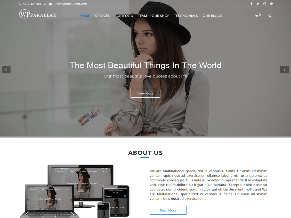wpparallax Download Free Wordpress Theme 3
