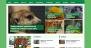 MH Biosphere Download Free WordPress Theme