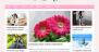 MH FeminineMag Download Free WordPress Theme