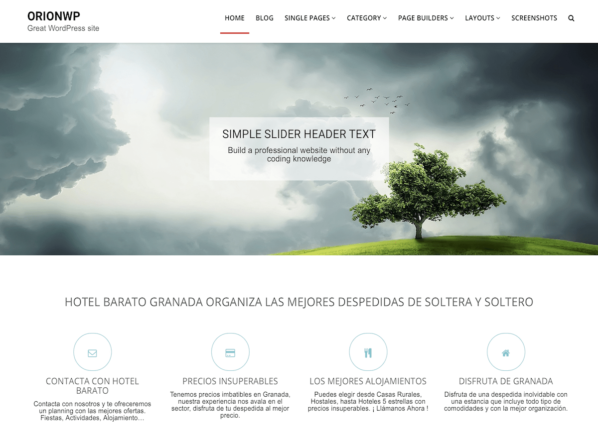 OrionWP Download Free Wordpress Theme 1
