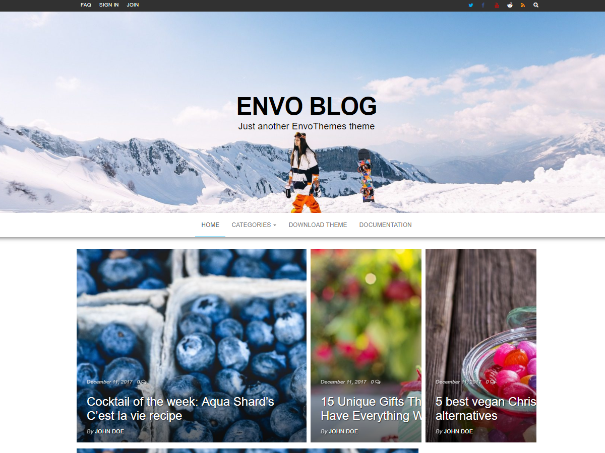 Envo Blog Download Free Wordpress Theme 2