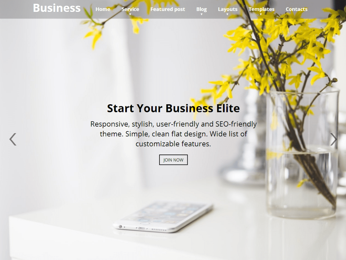Business Elite Download Free Wordpress Theme 4
