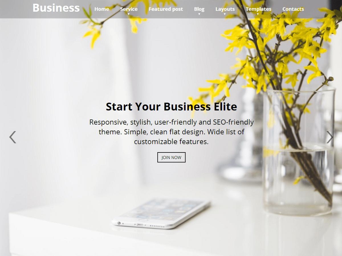 Business Elite Download Free Wordpress Theme 2