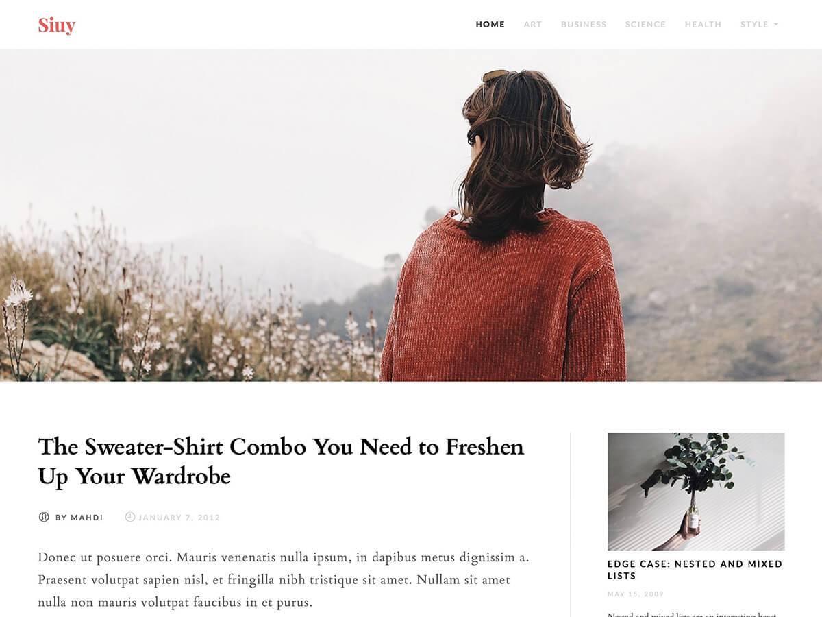 Siuy Download Free Wordpress Theme 4