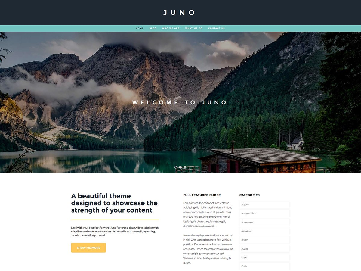 Juno Download Free Wordpress Theme 2