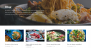 Rinzai Download Free WordPress Theme