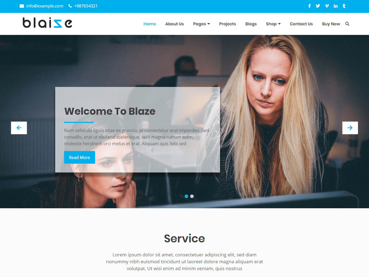 Blaize Download Free Wordpress Theme 3