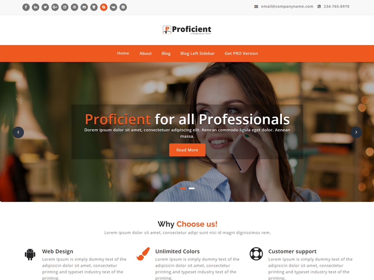 Proficient Download Free Wordpress Theme 3