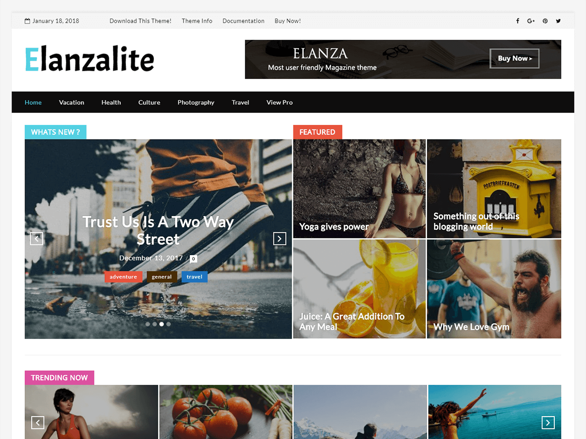 ElanzaLite Download Free Wordpress Theme 3
