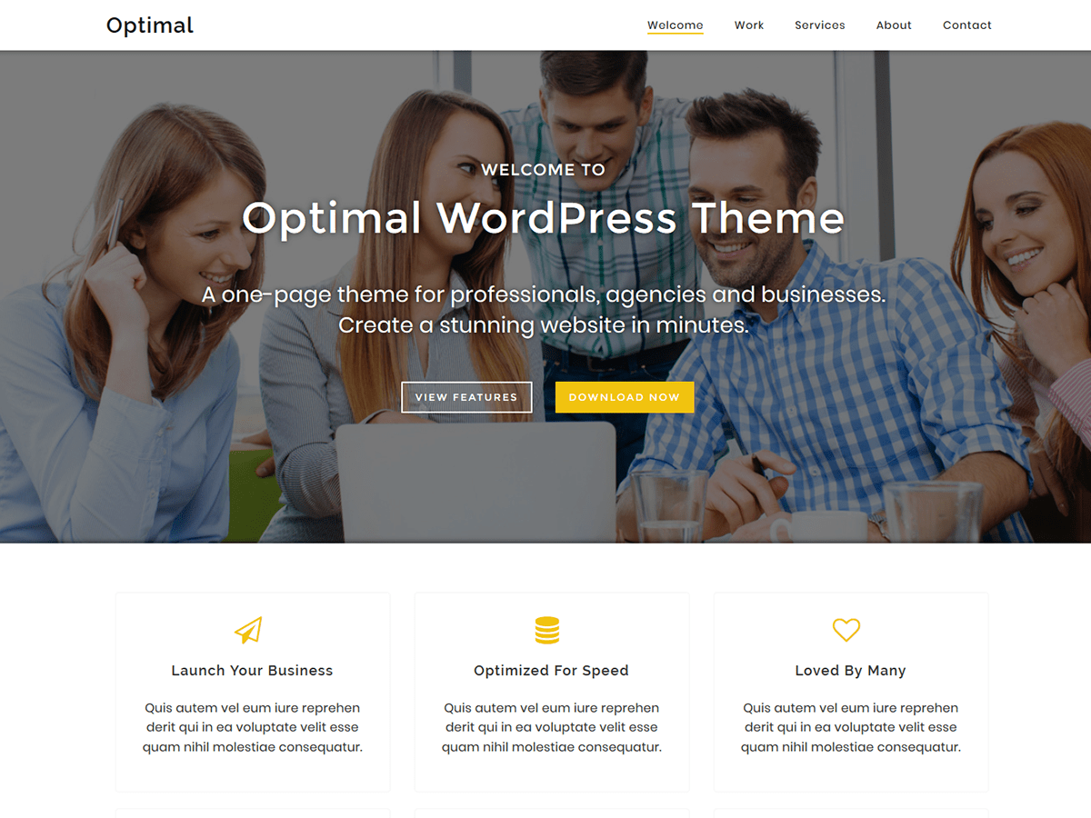 Optimal Download Free Wordpress Theme 5