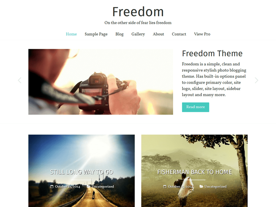 Freedom Download Free Wordpress Theme 4