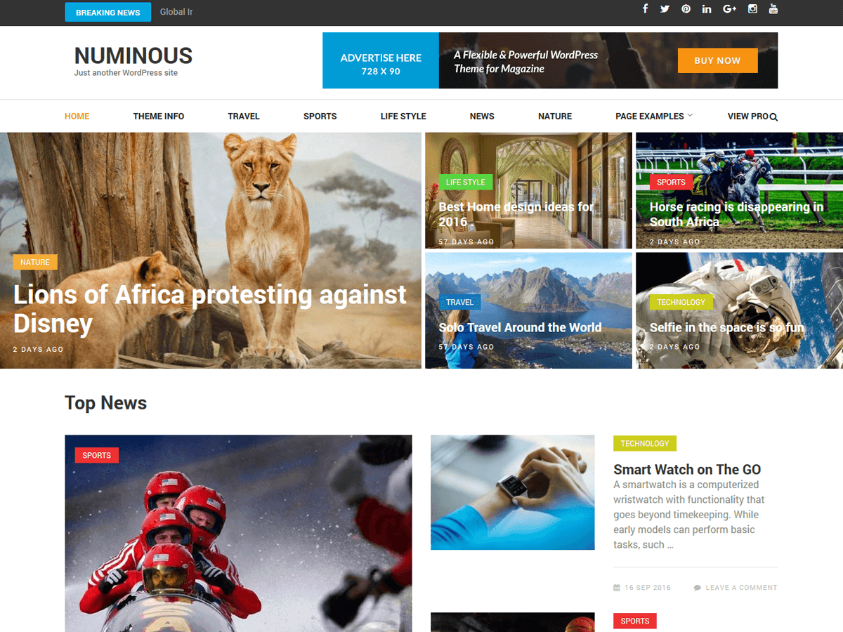 Numinous Download Free Wordpress Theme 1